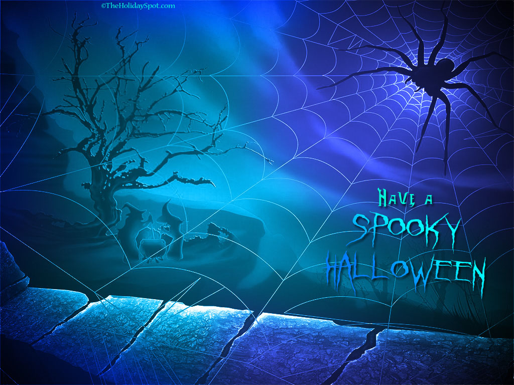 Spider Stock Images RoyaltyFree Images amp Vectors