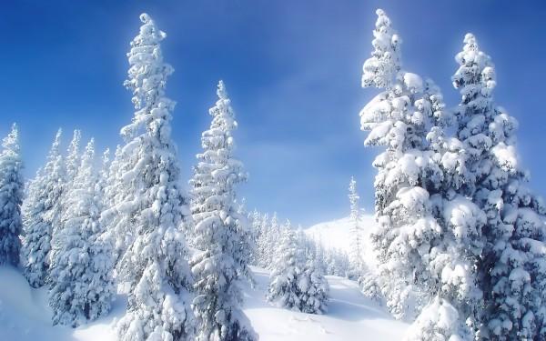 Скачать зимние обои