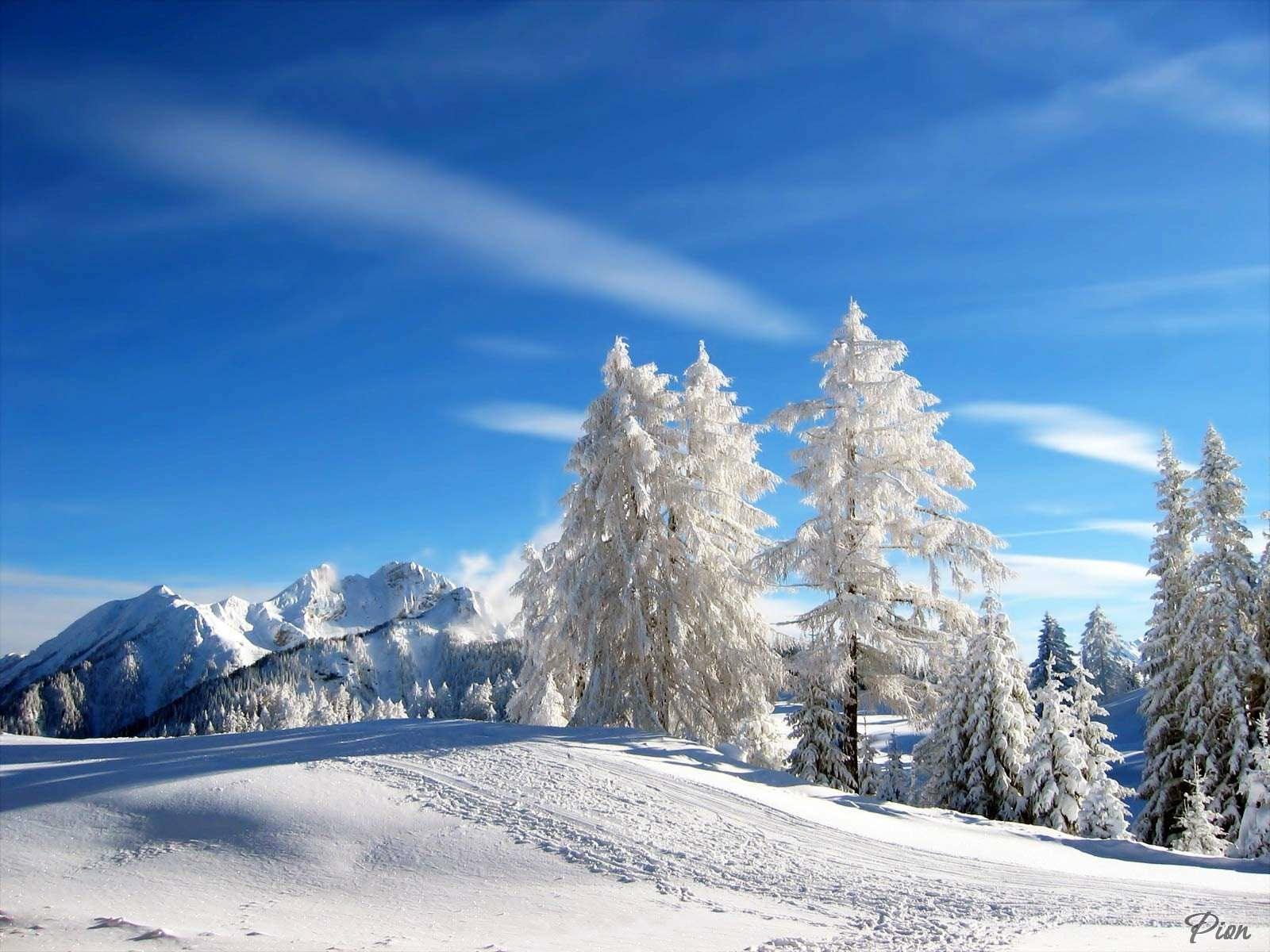 обои для рабочего стола пейзаж зимы № 618352 без смс